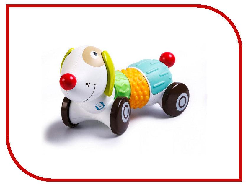 Игрушка B Kids Щенок Sensory 005214B игрушка черепашка b kids
