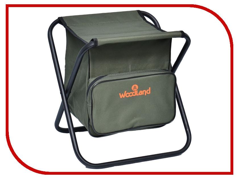 Стул WoodLand Compact BAG STS-02 0055543