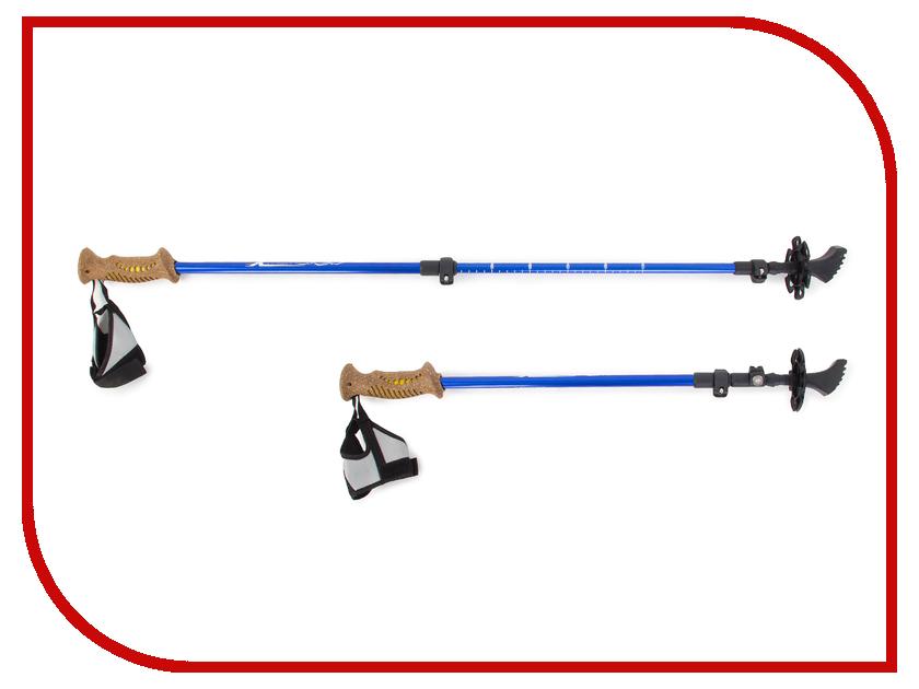 Палки Larsen Extreme 3-х секц. 70-140cm + чехол палки лыжные раздвижные larsen tour