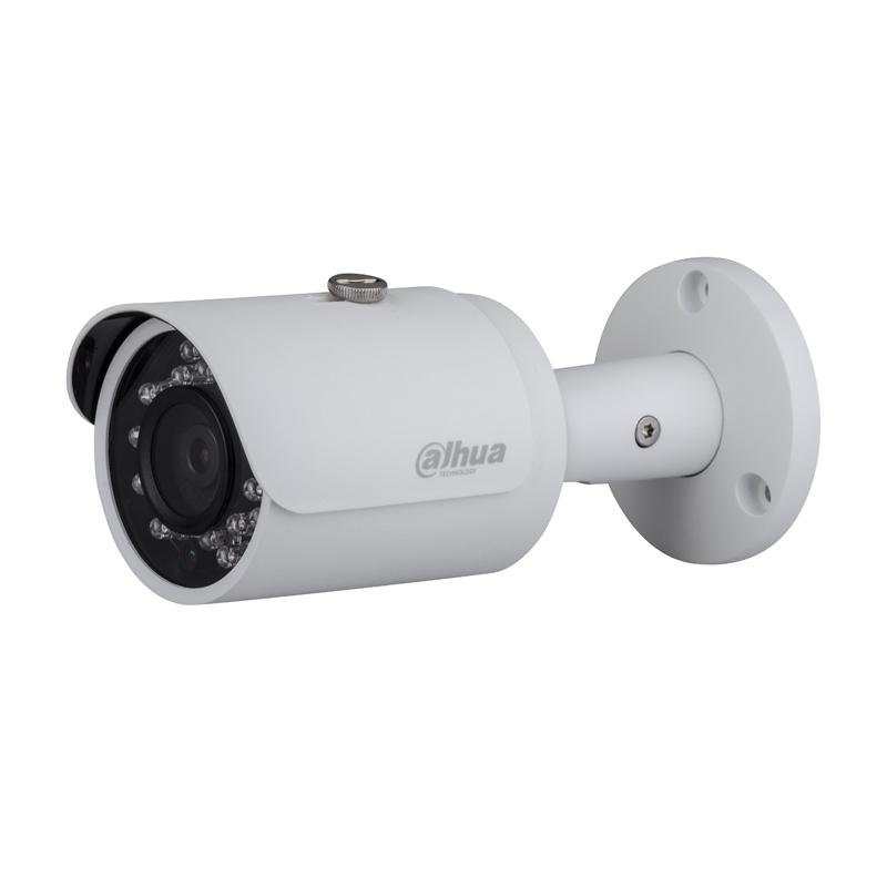 IP камера Dahua DH-IPC-HFW4221SP-0360B
