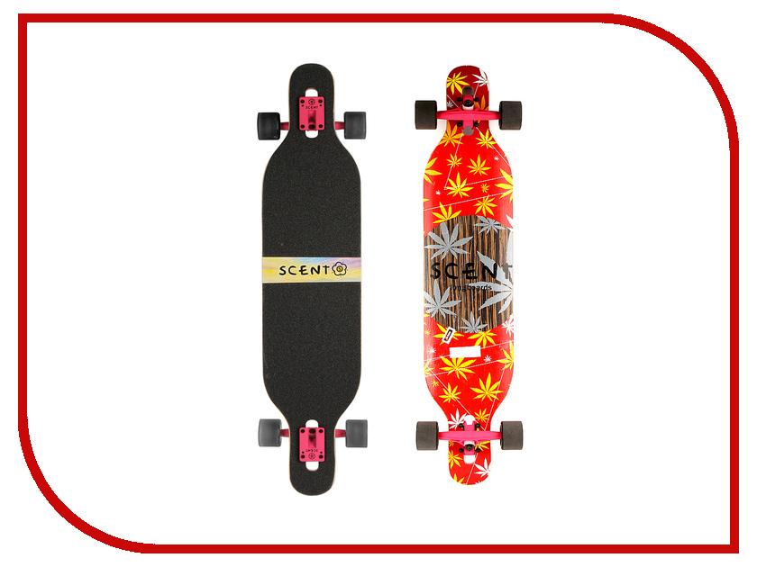Скейт Playshion 101 PL-SC101 chdhc 101