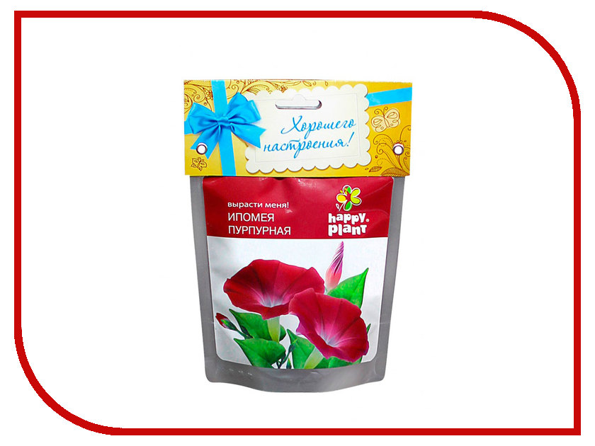 Растение Happy Plant Ипомея пурпурная hp-19