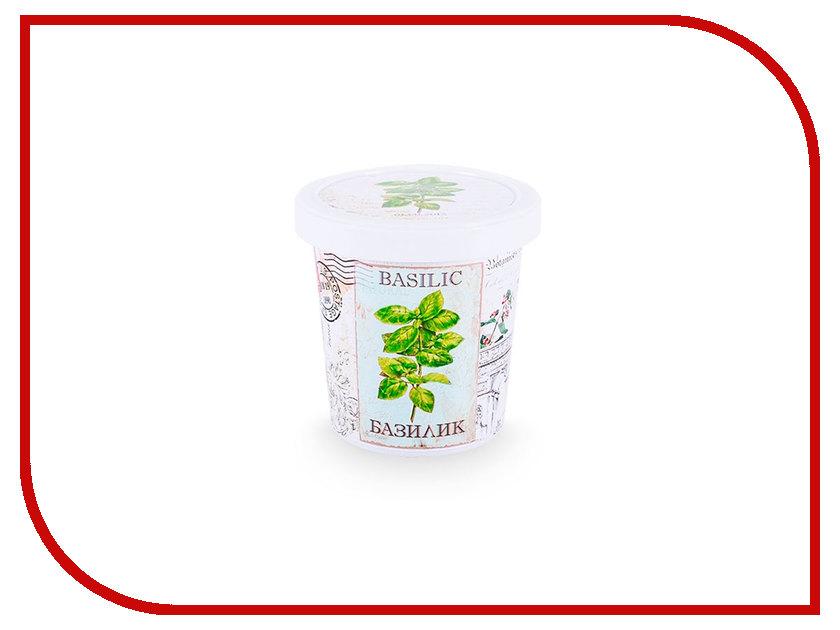 Растение RostokVisa Базилик Крылья ангелов B1482