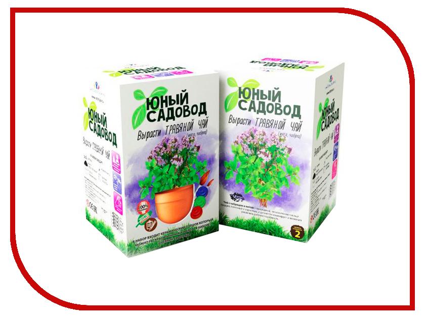 Растение Висма Юный садовод, Вырасти травяной чай 405