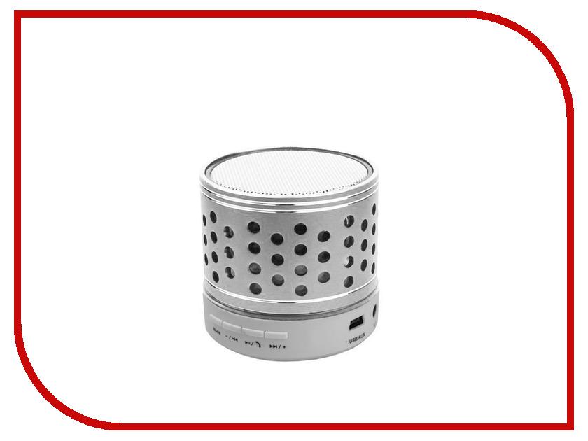Колонка Activ C102 Silver 65928