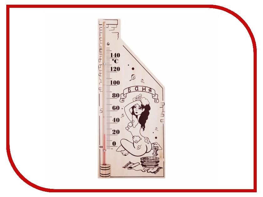 Термометр Rexant 70-0507