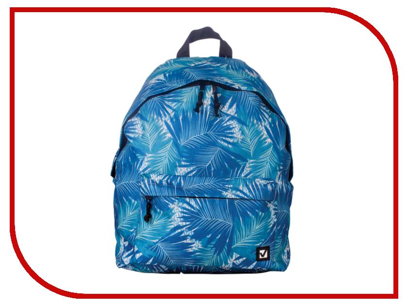 Рюкзак Brauberg Пальмы Blue 226414 brauberg brauberg рюкзак квадро искусственная кожа черный