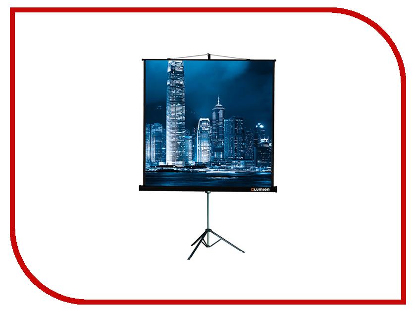 Экран Lumien Master View LMV-100109 203x203cm Matte White Fiber Glass экран на штативе lumien master view 203х203 lmv 100109