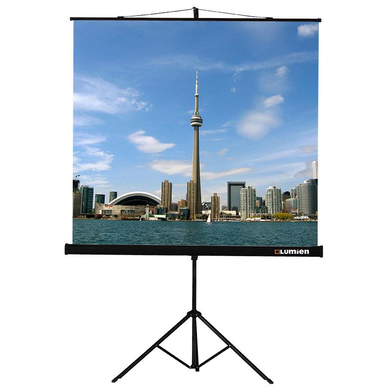 цена Экран Lumien Eco View 200x200cm Matte White LEV-100103 онлайн в 2017 году