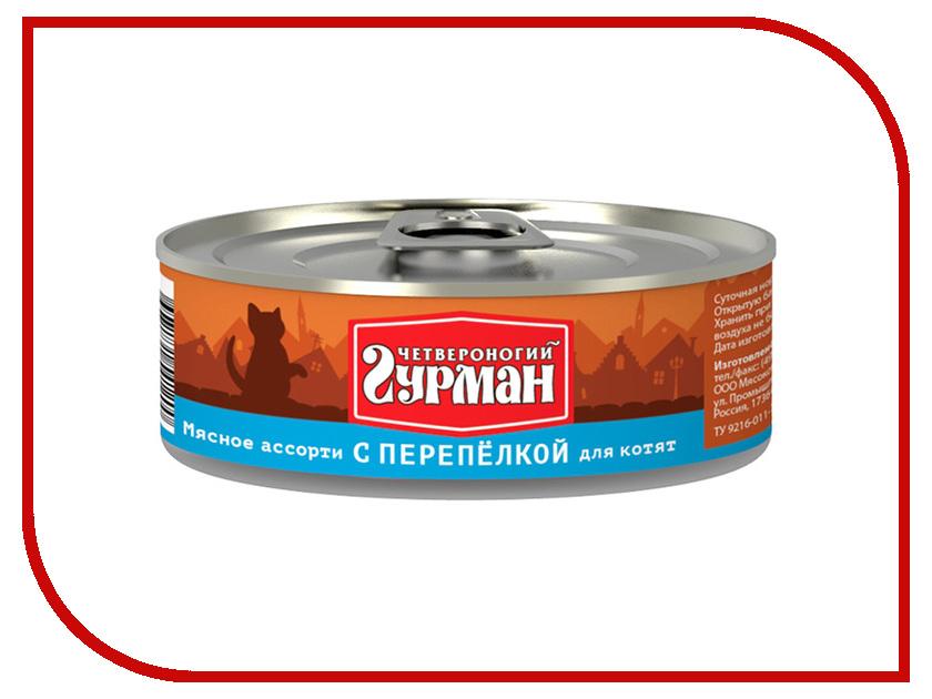 Корм Четвероногий Гурман Мясное ассорти с перепелкой 100g для котят 41697