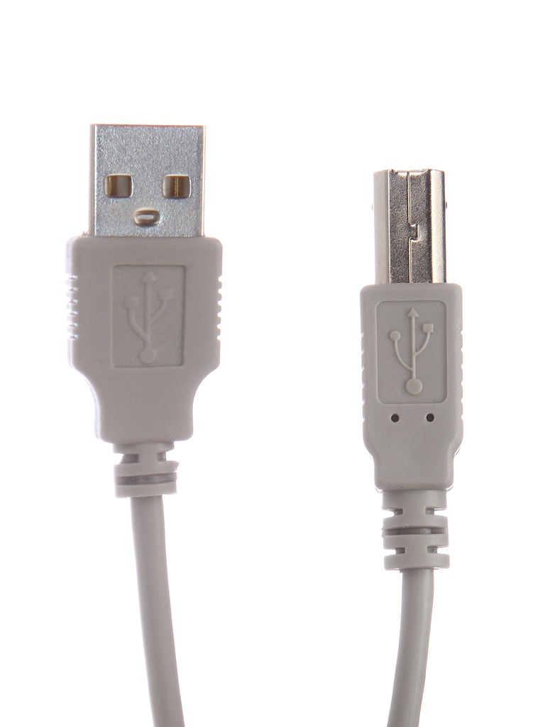 Фото - Аксессуар Gembird USB AM - USB BM 3m CC-USB2-AMBM-10 кабель usb 2 0 am bm 1 8м гарнизон gcc usb2 ambm 1 8m