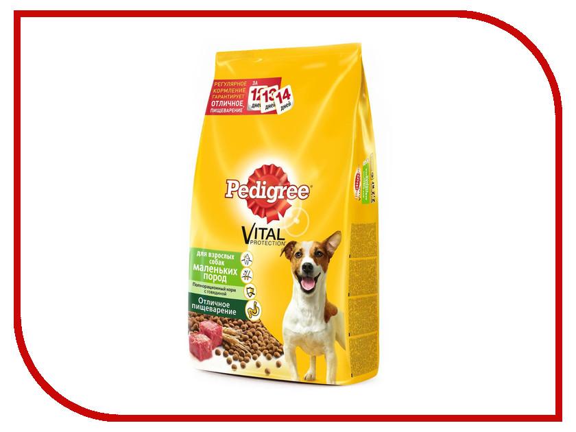 Корм Pedigree 5.5kg для взрослых собак мелких пород 10132027 laxmikant b dama thalassemia pedigree analysis