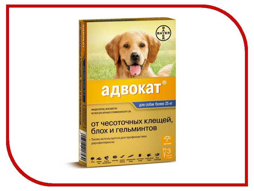 Витамины Bayer GL Адвокат 400 для собак более 25kg 4ml 01.06.2019 84288667