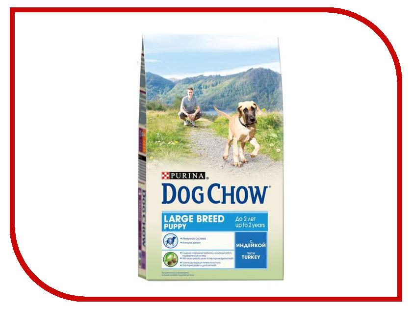 цены на Корм Dog Chow Puppy Large Breed Индейка 2.5kg для щенков крупных пород 12308766 в интернет-магазинах