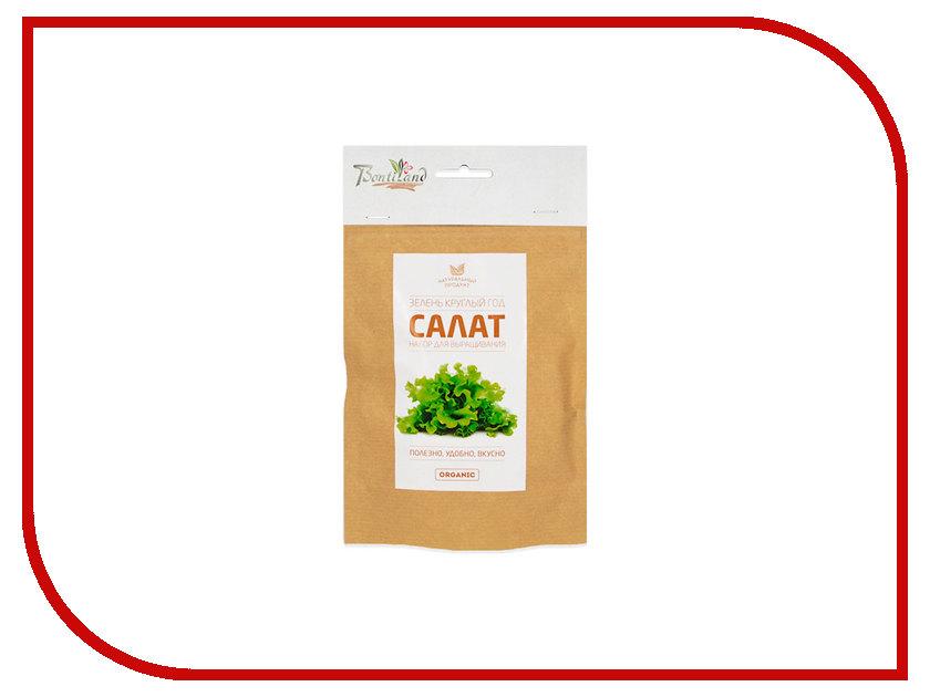 Растение BontiLand Салат 414846