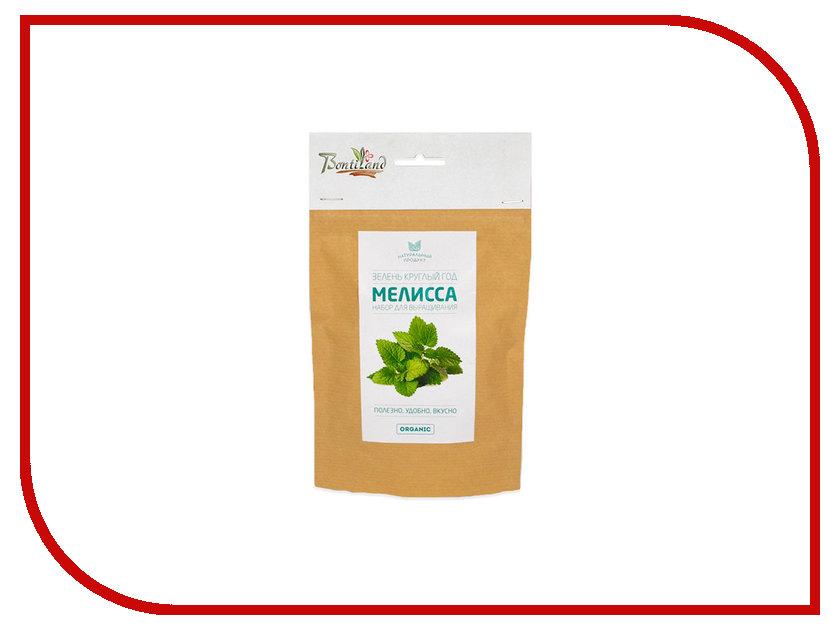 Растение BontiLand Зелень круглый год Мелисса 414877