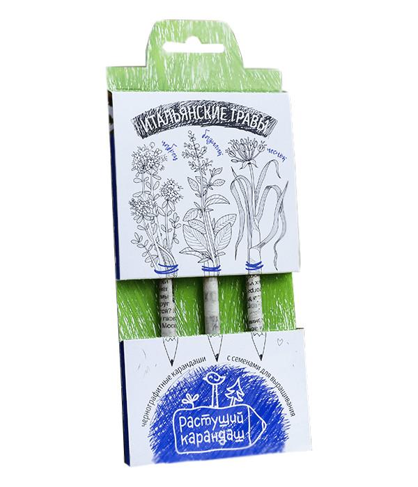 Растение Растущий карандаш Итальянские травы чернографитные 3шт RK-01-03-03