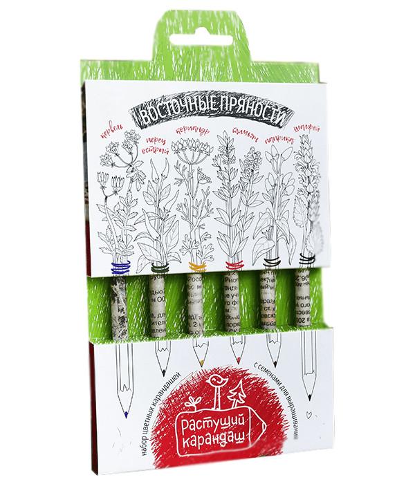 Растение Растущий карандаш Восточные пряности цветные 6шт RK-02-06-06 фото
