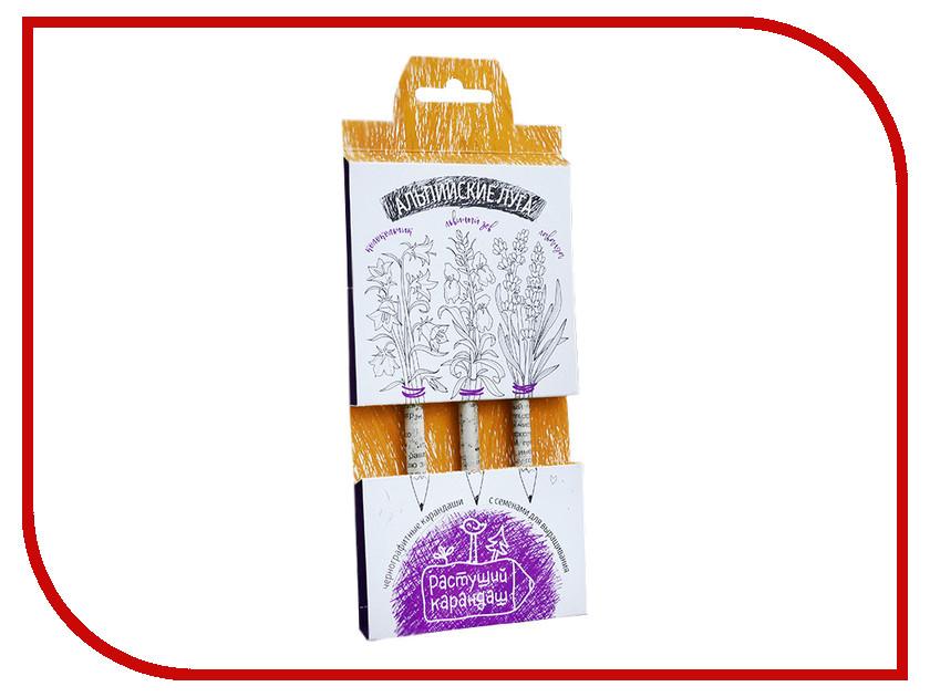 Растение Растущий карандаш Альпийские луга чернографитные 3шт RK-01-03-11 растение растущий карандаш восточные пряности цветные 6шт rk 02 06 06