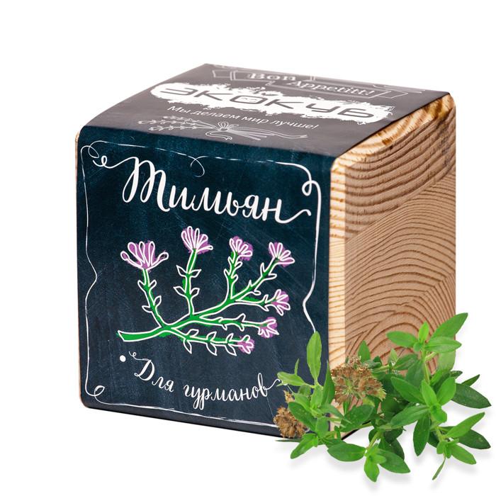 Растение Экокуб Тимьян ECB-02-05 / М5775