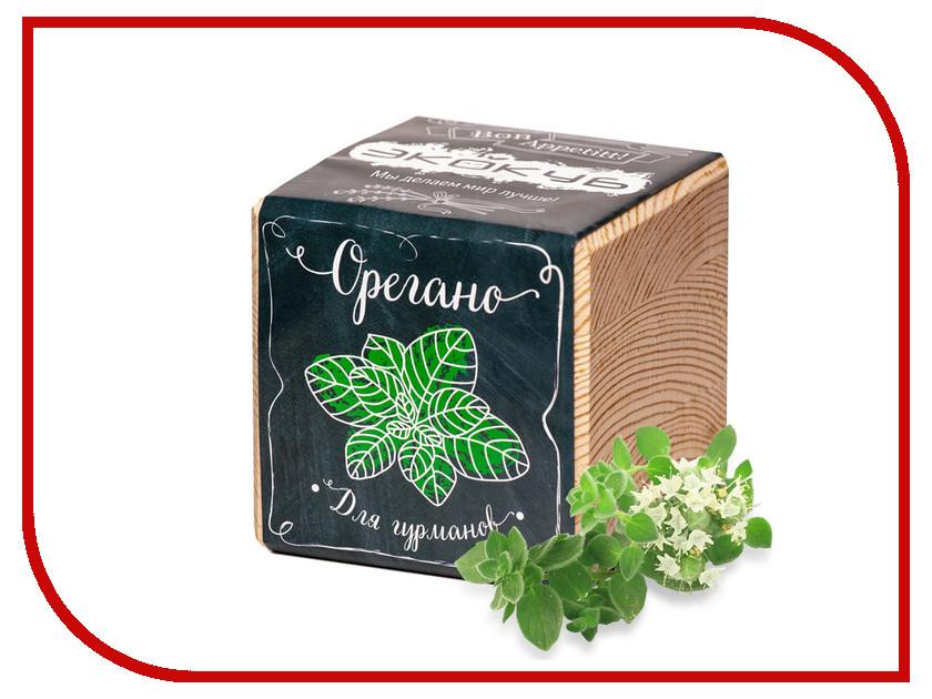 Растение Экокуб Орегано ECB-02-04