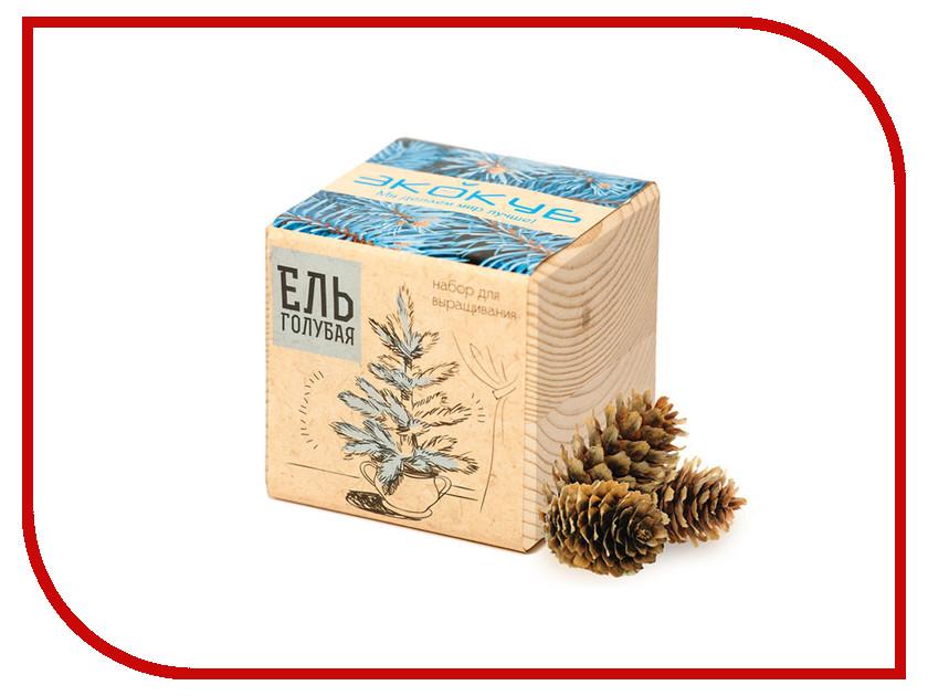 Растение Экокуб Голубая Ель ECB-01-01 брошь strombidae голубая