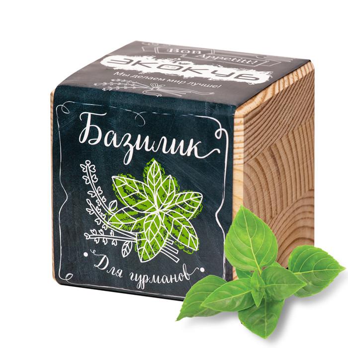 Растение Экокуб Базилик ECB-02-02