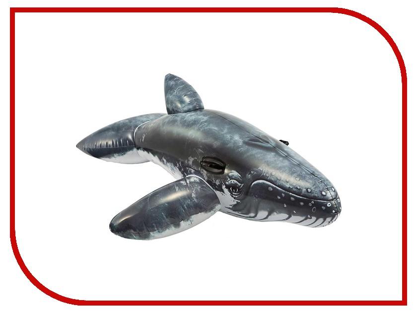 Надувная игрушка Intex Кит 201x135cm 57530 лодка intex challenger k1 68305