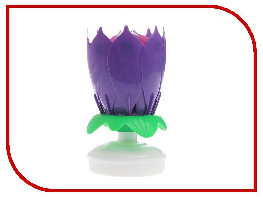 Свеча музыкальная Drivemotion Лотос Purple все цены