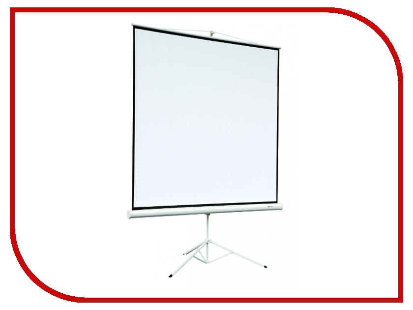 Экран Digis Kontur-A DSKA-4301 120x160cm