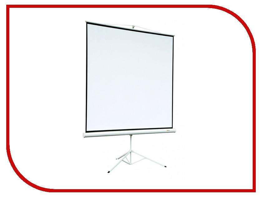 Экран Digis Kontur-A DSKA-4304 165x220cm