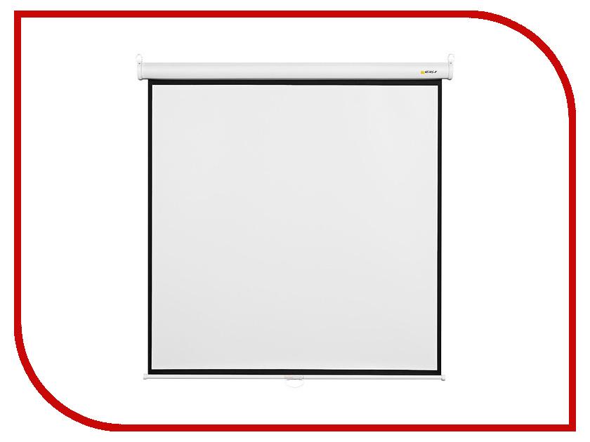 Экран Digis Optimal-B DSOB-4304 165x220cm