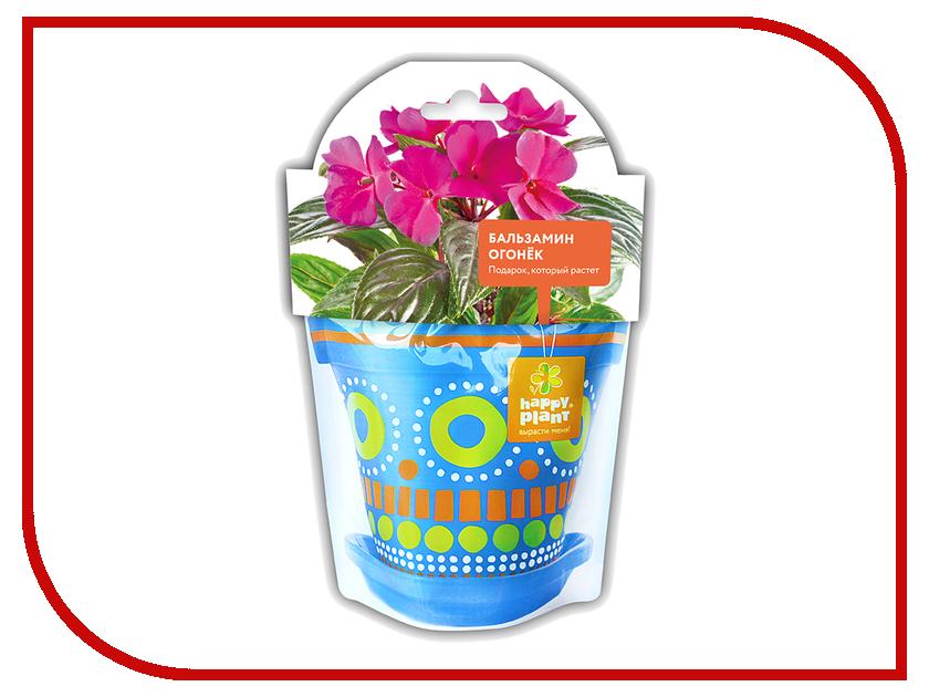 Растение Happy Plant Бальзамин огонек hpd-3 octavian s ksenzhek plant energetics