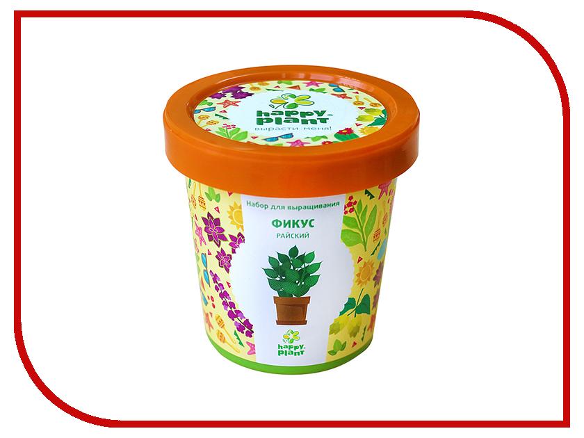 Растение Happy Plant Горшок Фикус райский hpn-12