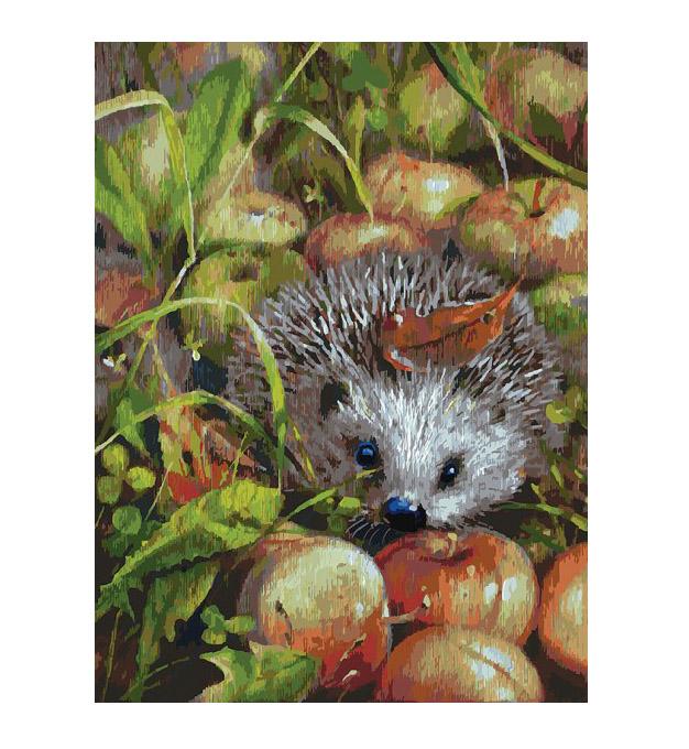 Картина по номерам Белоснежка Яблочный ёжик 140-AS картина по номерам 40 x 50 см ktmk 393605