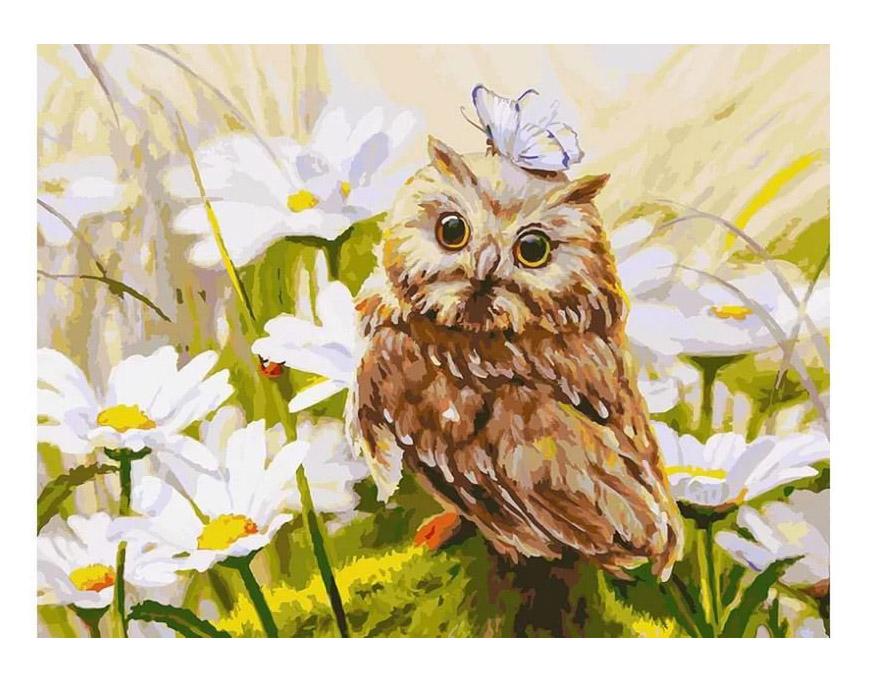 Картина по номерам Белоснежка Сова Везучка 3016-CS цена и фото