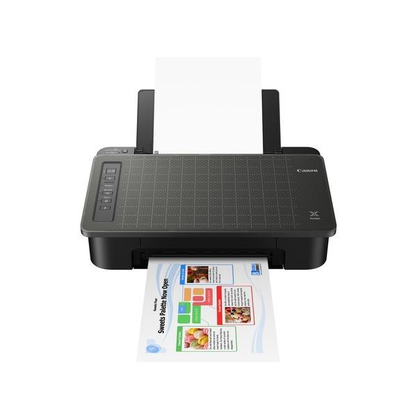 Принтер Canon Pixma TS304 цена
