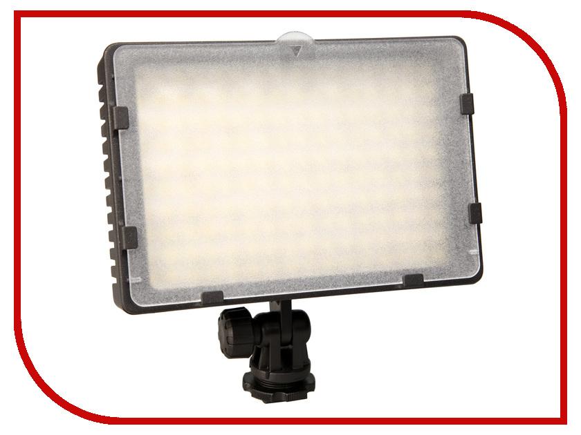 ���������� ���� Raylab Kino LED-160