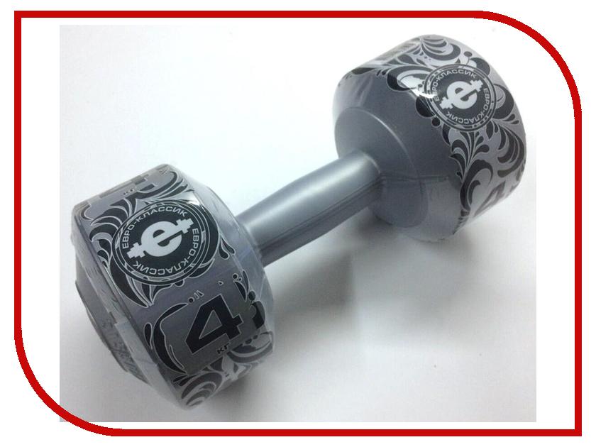 Гантель Euro Classic 4kg Silver skagen ремни и браслеты для часов skagen skskw2267