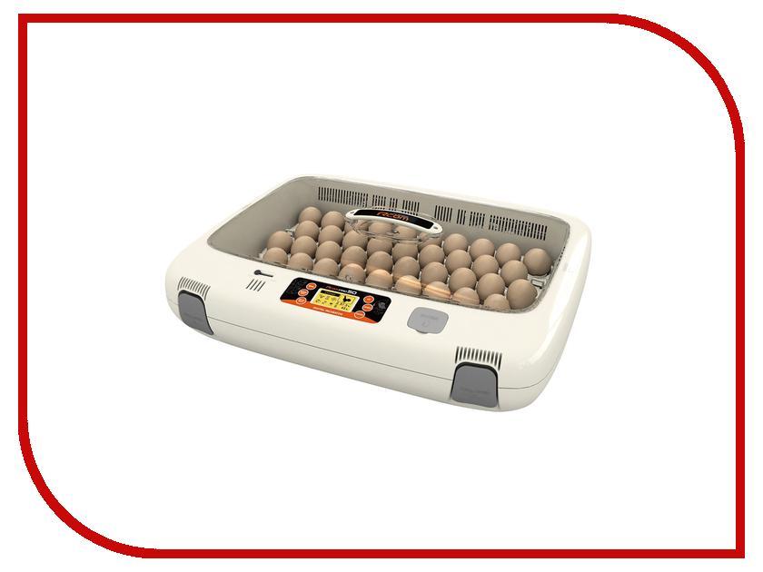 Инкубатор Rcom 50 Pro PX-50 инкубатор rcom 20 pro px 20