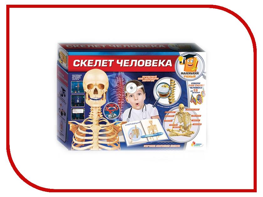 Игра Играем вместе Скелет человека TXL-117-R goowiiz скелет человека vivo x9s