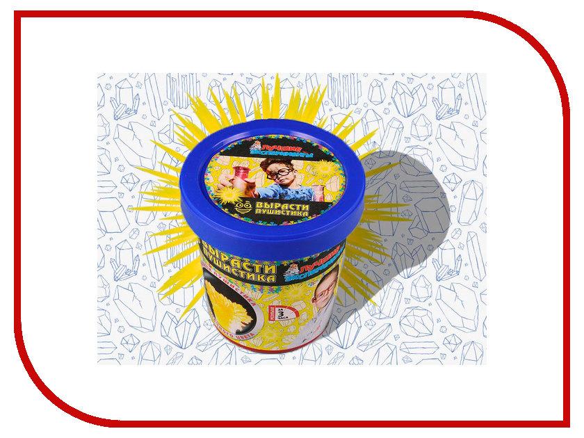 Игра Bumbaram Юный Химик Вырасти солнечного пушистика Х041