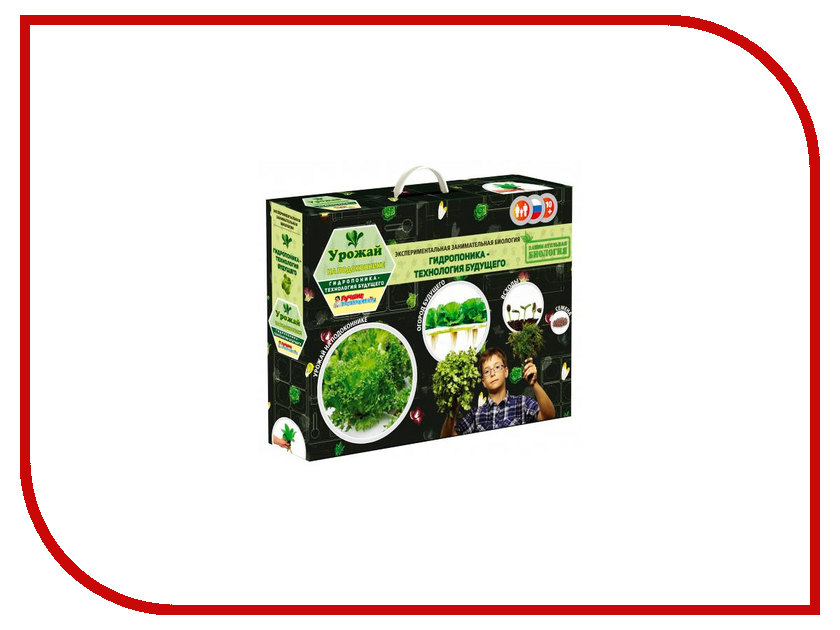 Игра Bumbaram Занимательная Биология Урожай на подоконнике x028n