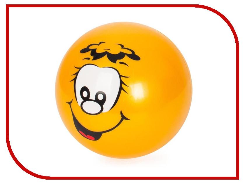 Мяч Larsen Апельсин 15cm GSS-2 самокат larsen scooter gss s2 001 n c n s