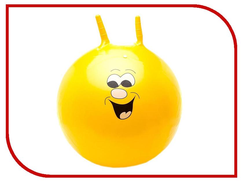 Мяч Larsen Улыбка 65cm GSJ-5 мяч попрыгун larsen тигренок gsj 3 46см