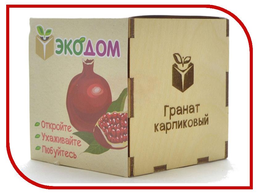 Растение ЭкоДом Гранат Карликовый 1061843804469 растение экодом лаванда 1061843804452