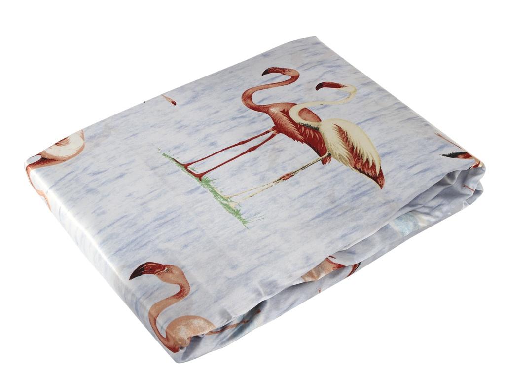 Постельное белье Belvedere Комплект 2-спальный 5 49-AP
