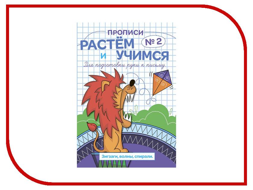 Обучающая книга Феникс+ Прописи Растем и учимся Зигзаги, волны, спирали 47314