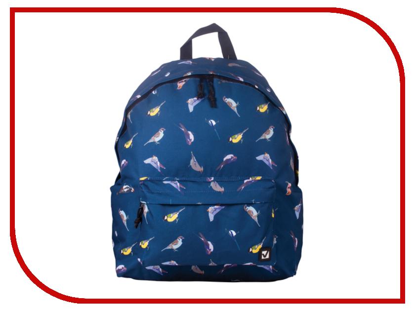Рюкзак Brauberg Птицы 226401 brauberg brauberg рюкзак кантри синий