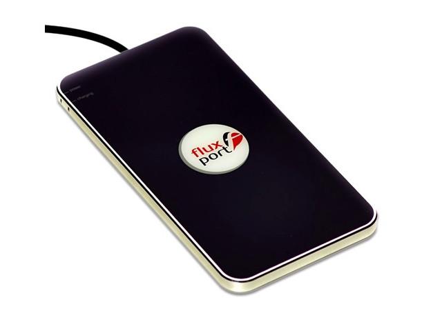 лучшая цена Зарядное устройство FluxPort Steel Black